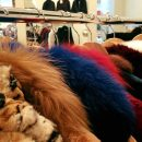Out & About: Minka's Furs